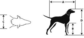 pet-measure-kennel