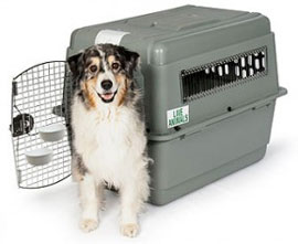 pet-shipping-crate