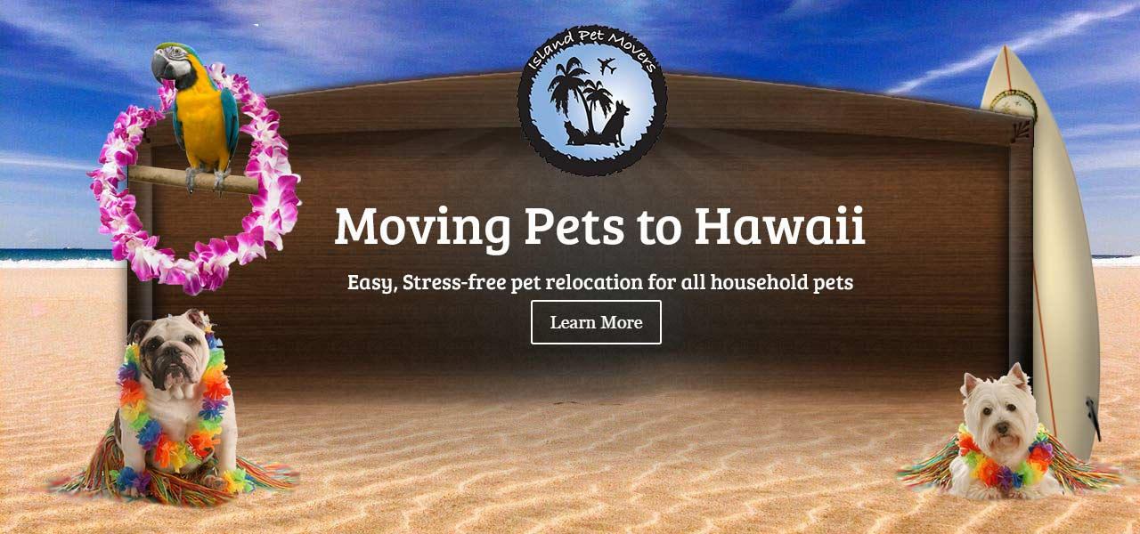 Island Pet Movers - We Relocate Pets!